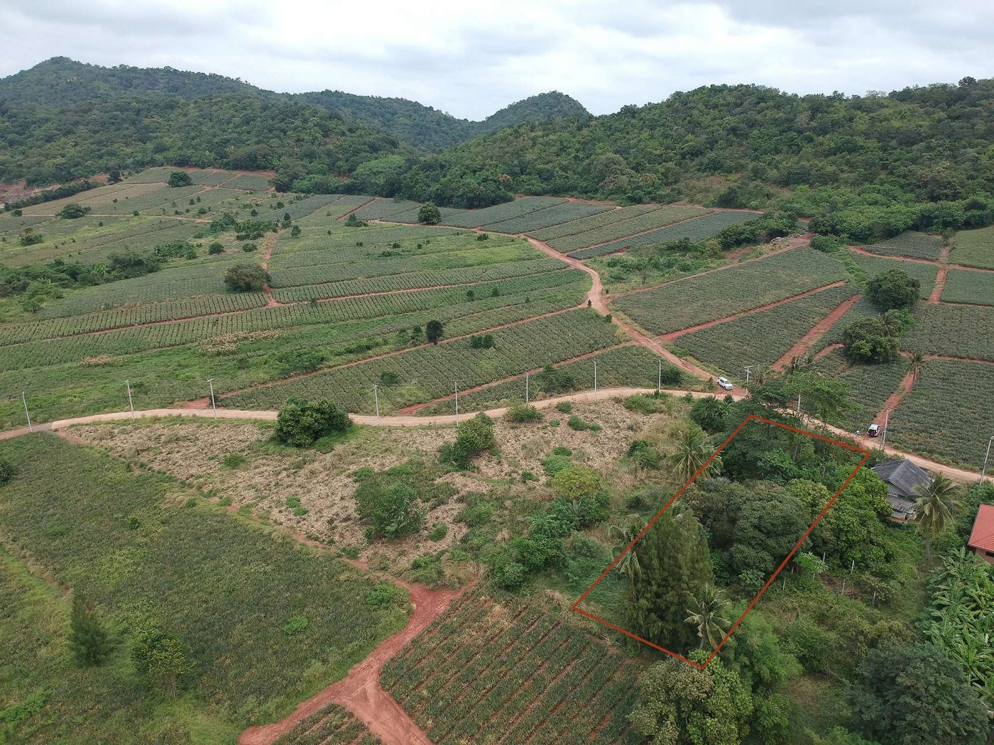 large plot land for sale cheap price