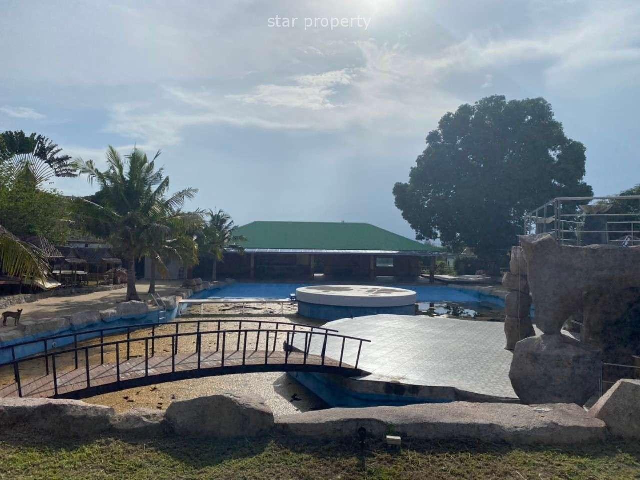 Electric Mangu Bungalow Resort